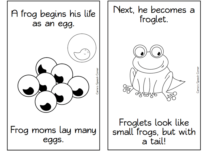 Printables Frog Life Cycle Worksheet 13 frog life cycle resources and printables teach junkie free of a printable mini