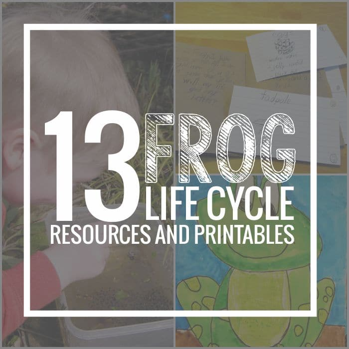 13 Frog Life Cycle Resources and Printables - Teach Junkie