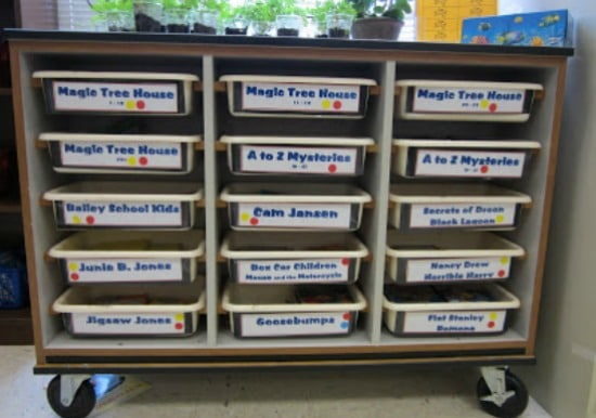 Teach Junkie:10 Classroom Library Organization Labels {Free Download}