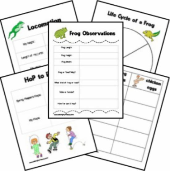 Printables Frog And Toad Worksheets 25 easy frog and toad ideas activities teach junkie observations