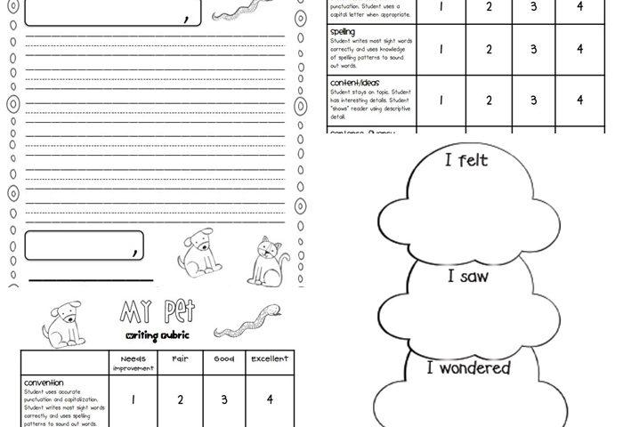 Writing Rubrics for Primary Grades
