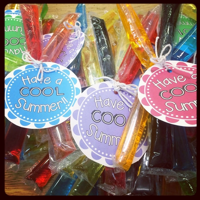 9 Excellent End of the Year Gifts for $1 - Cool Summer Popsicles - Teach Junkie