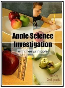 Free Apple Science Observation Worksheets - Teach Junkie
