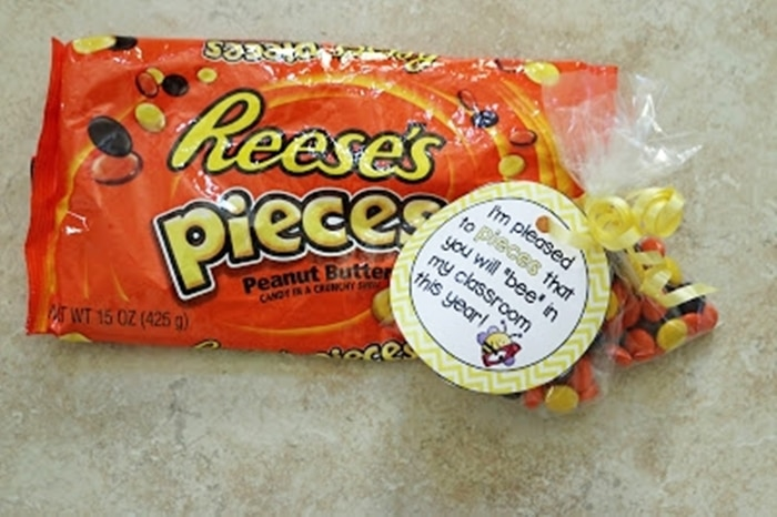 Free August Activities and Printable Resources - reeses pieces treat topper