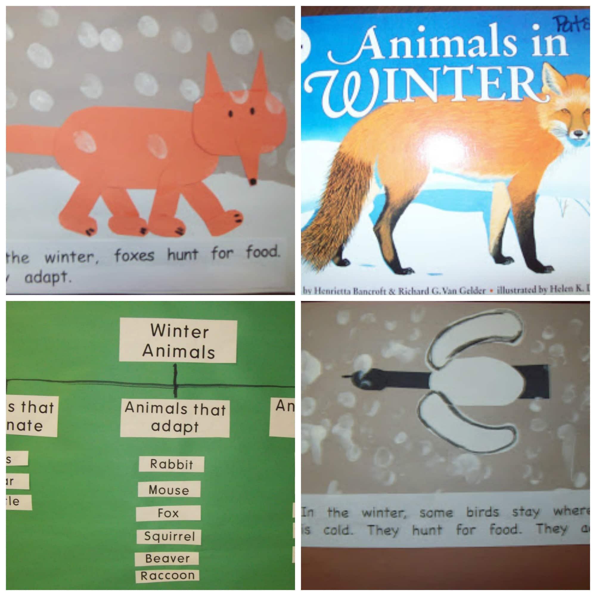 8 Hibernation and Migration Ready to Go Resources Teach Junkie – Hibernation Worksheets Kindergarten