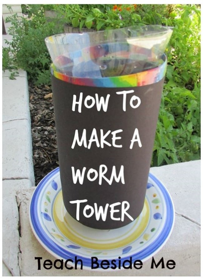 How to Make a Worm Tower - Teach Junkie