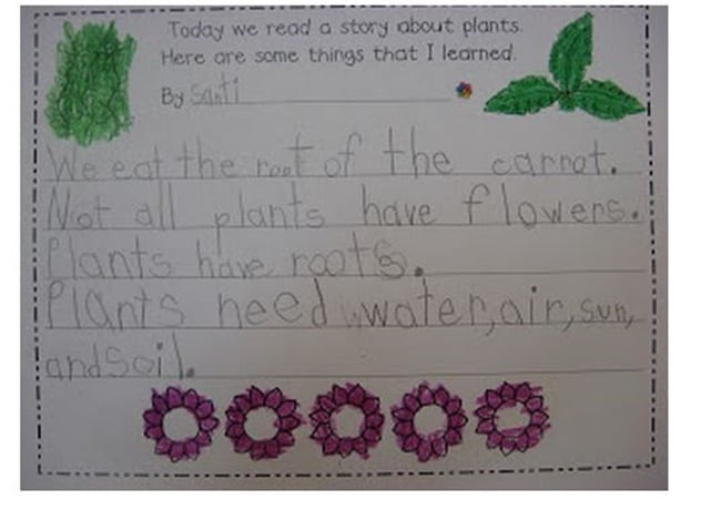 Facts About Plants Writing Template {Printable} - Teach Junkie