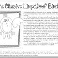 The Elusive Lirpaloof Bird - Teach Junkie